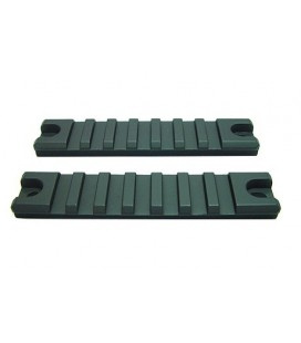 SET RAIL RIS G36 (2u)